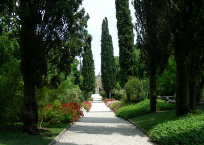 There are loads of lovely plants and walks all around you at Lake Garda