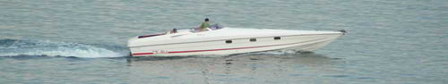 OK so maybe you can't hire this one! You'll definitely see and hear some beauties on the lake.